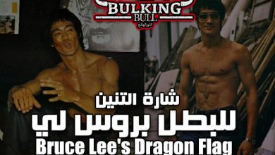 bruce lee dragon flag 3984524 1