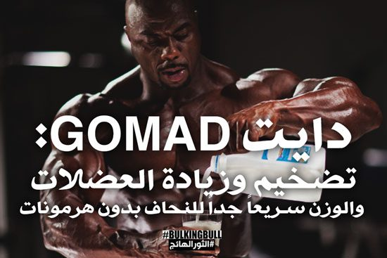 gomad-for-hardgainers-6051707