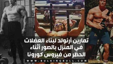stay home corona virus arnold schwarzenegger workouts
